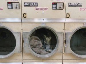 マウンテンライトジャケットの洗濯方法は?
